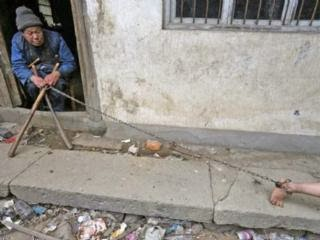 Photo of 11-year-old mentally-ill Chinese boy He Zili lives chained up like a dog