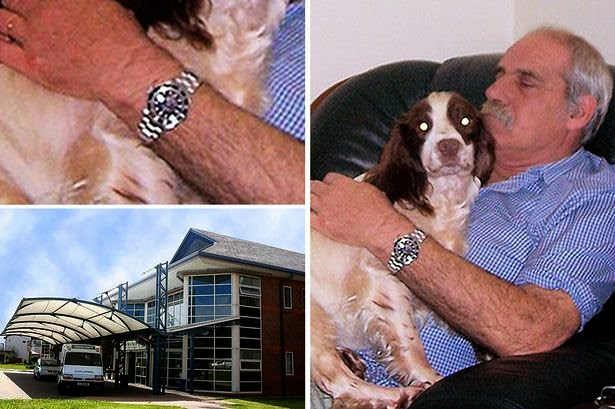 Photo of Heartless thieves steal watch from dying pensioner – as he was RESUSCITATED in hospital