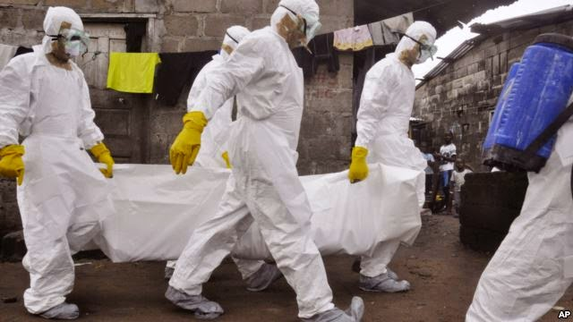 Photo of WHO: Ebola Fight Needs More Workers