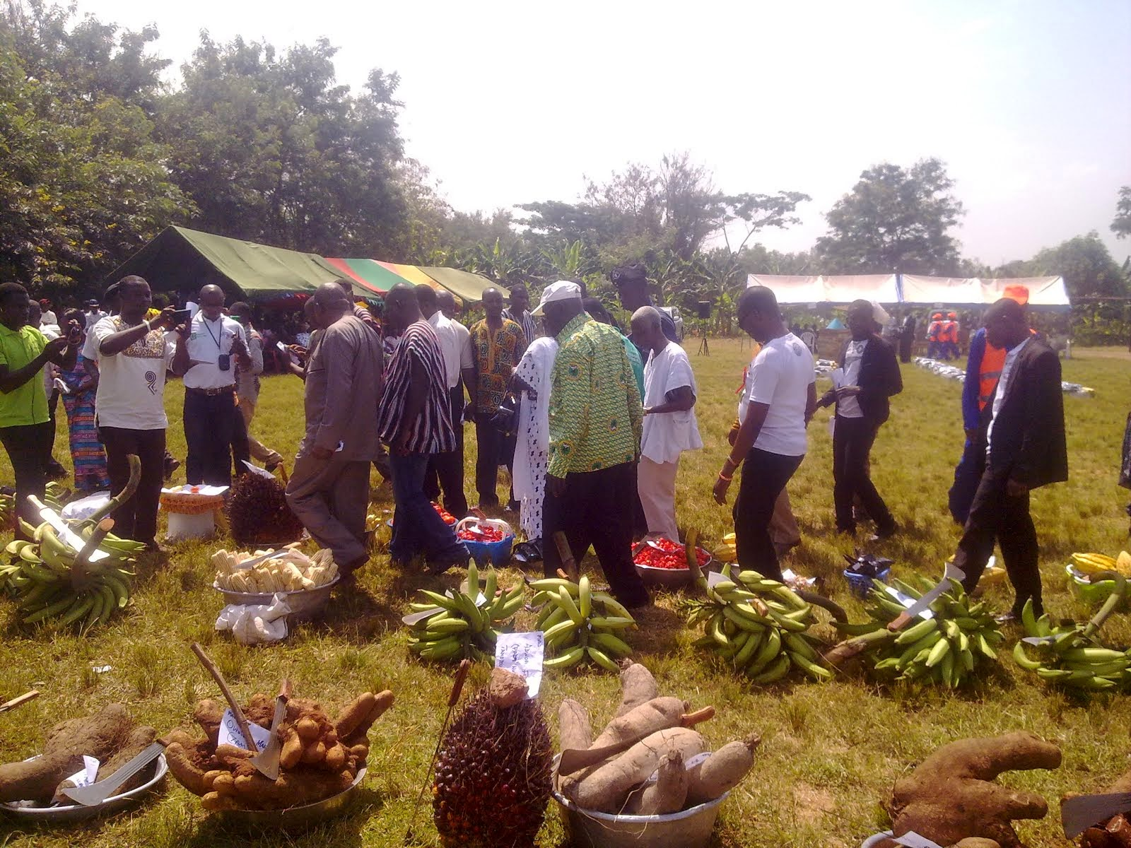 Photo of Techiman North District Awards 27 Farmers on National Farmers Day