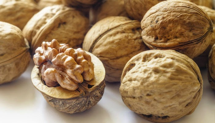 Photo of Walnuts have potential to benefit our overall health
