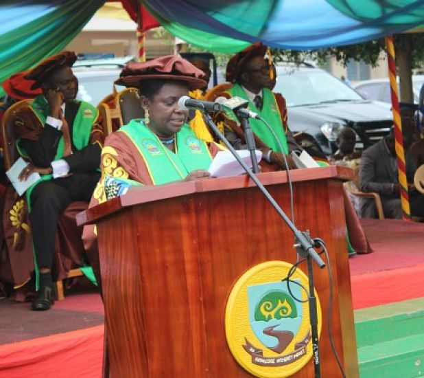 Photo of Women Participation In The Study Of Science And Technology, Engineering And Mathematics Has Been Low—Prof. Mrs. Esi Awuah