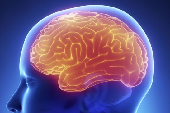 Photo of Sleep deprivation may lead to memory loss
