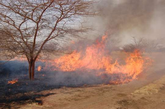 Photo of Bush Fire Cases On Ascendancy In Brong Ahafo Region