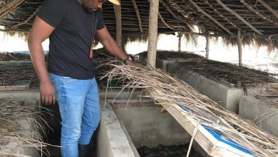 Photo of John Dumelo Wishes To See Many Ghanaian Youth Venturing Into Farmer