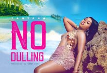 Photo of Fantana Releases New Song 'No Dulling' (Listen And Watch Visuals)